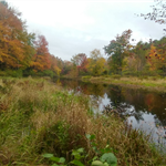 An autum view of the Otter River lined by golden grasses and colorful foliage
